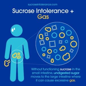 Infographic - Sucrose Intolerance and Gas