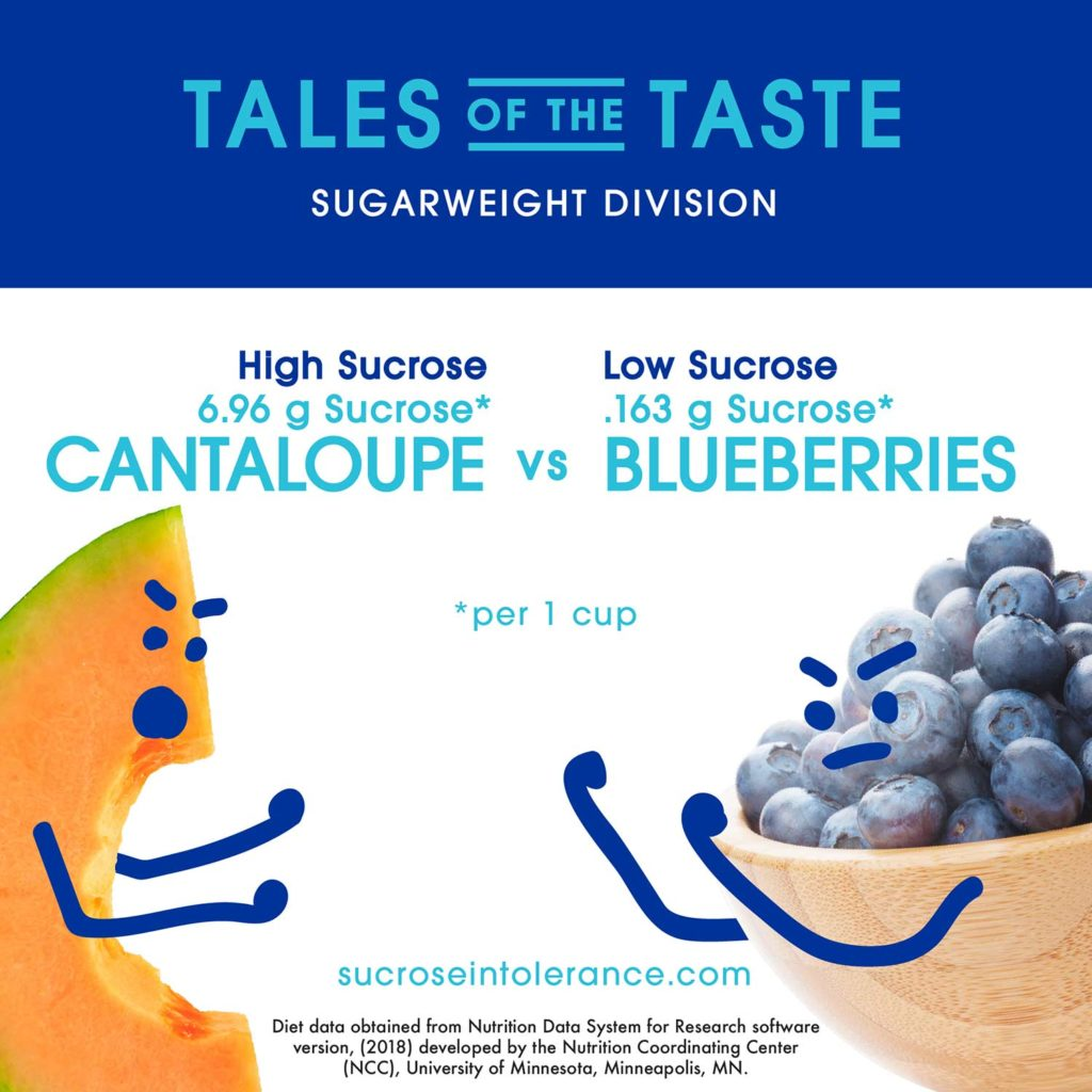 Infographic - Cantaloupe vs Blueberries